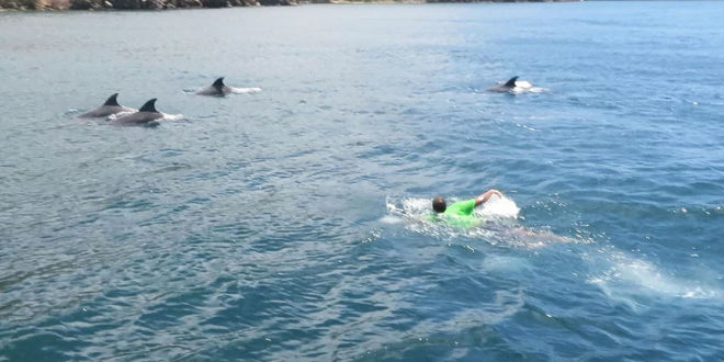 Swimming with the dolphins cruising Down the Islands by Nadia Ali in Sweet T&T, Sweet TnT Magazine, Trinidad and Tobago, Trini, vacation, travel