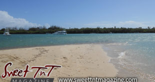 No Man's Island Tobago, Getaway Sweet T&T, Sweet TnT, Trinidad and Tobago, Trini, vacation, travel,
