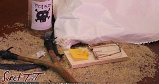 Rat traps for rats, poison, sling shot Sweet T&T, Sweet TnT Magazine, Trinidad and Tobago