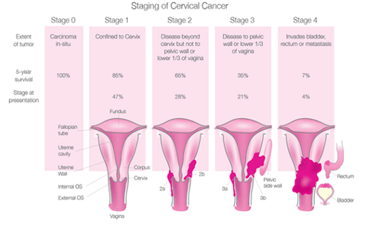 Cervical Cancer month is January, fight support, hope